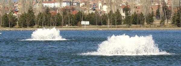 fish-lake-pond-tips-aeration-muck-underwater-dock-lights-22.jpg