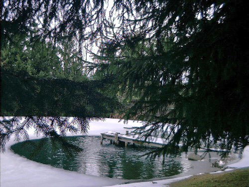 fish-lake-pond-tips-aeration-muck-underwater-dock-lights-deicer-23.jpg